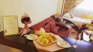 تور مشهد هتل عماد از تهران