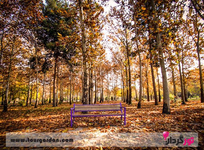 پاییز در پارک ملت مشهد