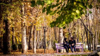زیبایی های طبیعت پاییزی در پارک ملت مشهد