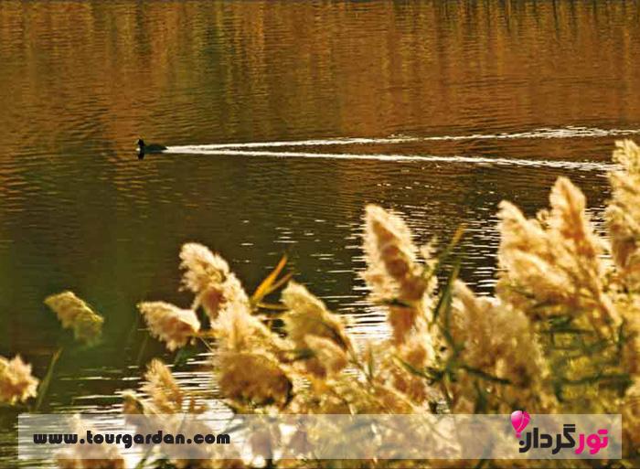 دریاچه بزنگان اطراف مشهد