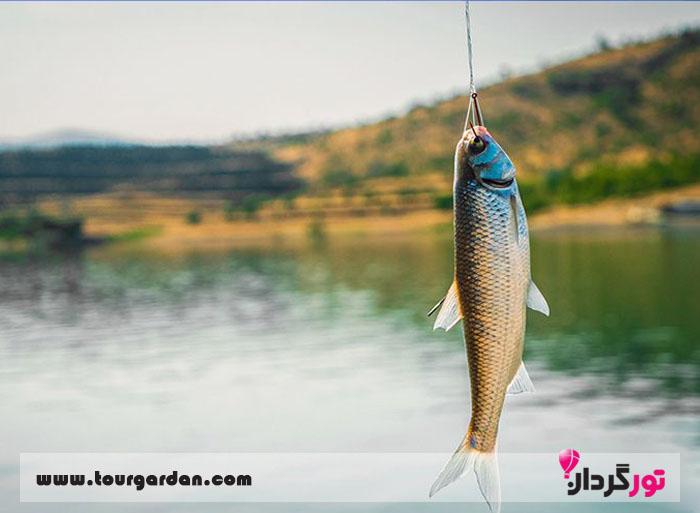 ماهیگیری تفریحی در مشهد