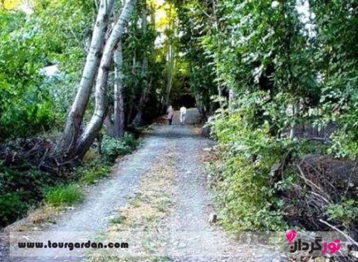 پارک جنگلی شاندیز