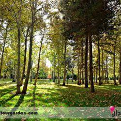 پارک وکیل آباد | ناگفتههایی شنیدنی که نباید از دست دهید