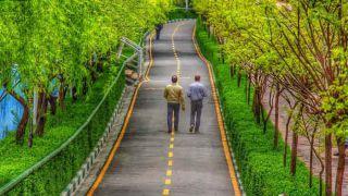 پارک های تهران | معرفی بخش های دیدنی و تفریحی