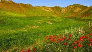 جاهای دیدنی خراسان رضوی | 100 جاذبه در استان خراسان رضوی