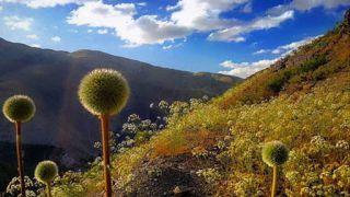 جاهای دیدنی زشک ؛ کوهنوردی، طبیعت گردی، گشت و گذار