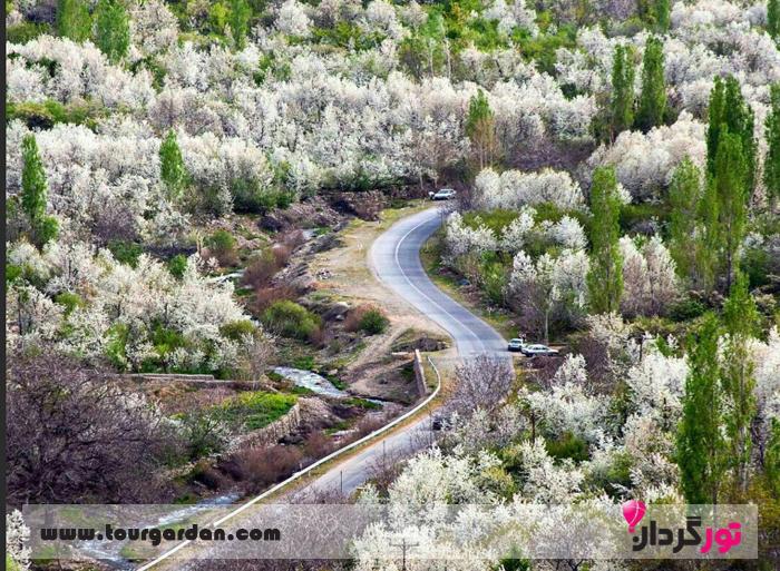 جاده بوژان در بهار
