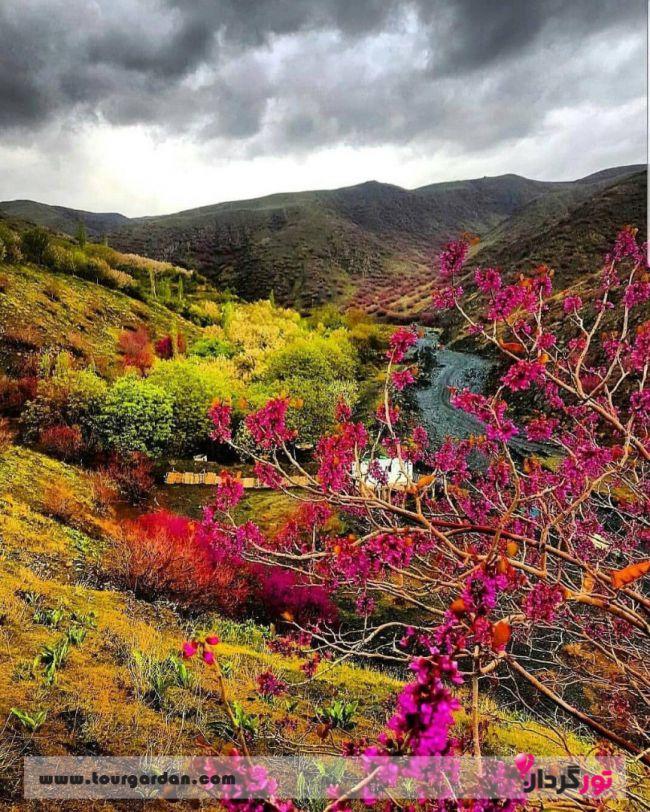دره ارغوان مشهد