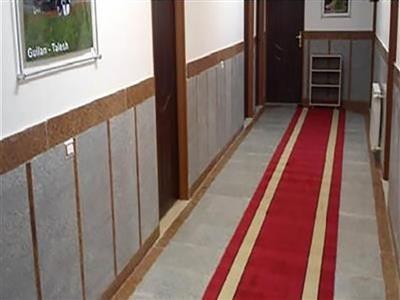 تور رشت هتل غدیر از تهران