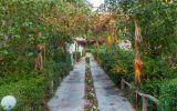 تور کیش از اصفهان هتل فانوس